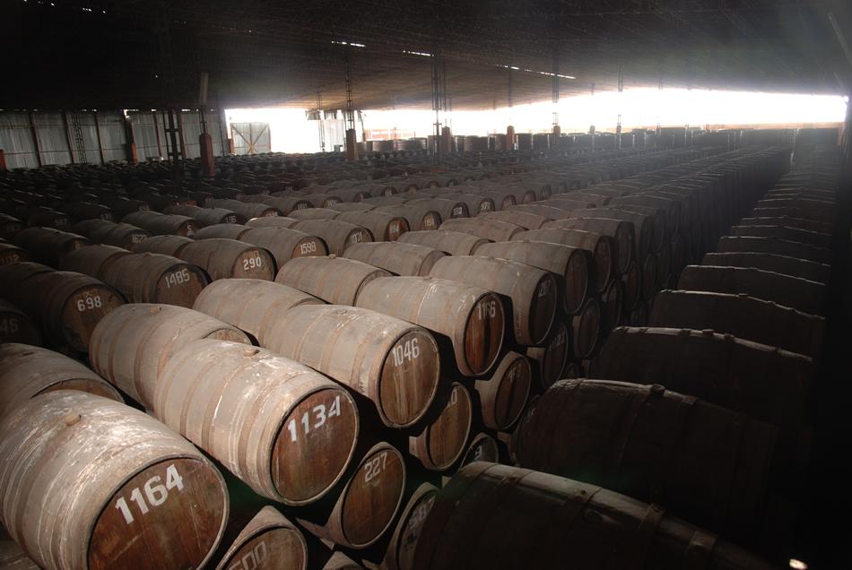 Millonario Distillery